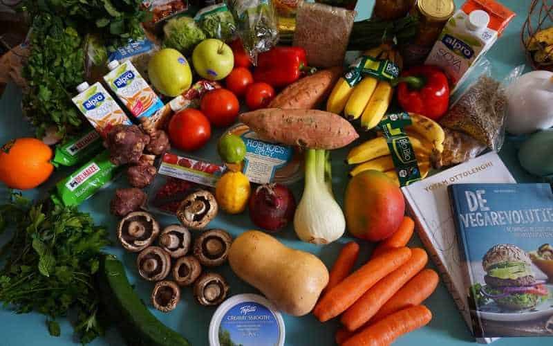 Vegetarianismo OU Veganismo qual a diferença entre eles e os seus benefícios para a saúde