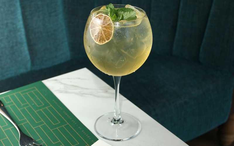 Gin tônica qual é a história do drink do ano