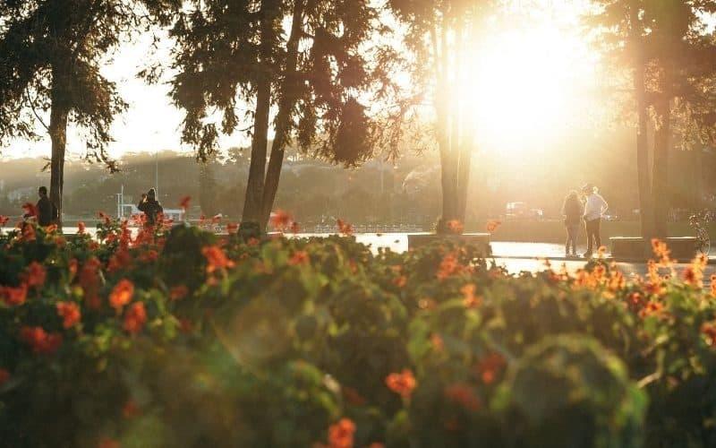 7 destinos para conhecer na primavera